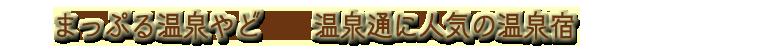 まっぷる温泉やど(東北)