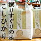 東山温泉 向瀧 会津コシヒカリ