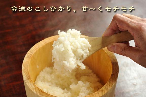 会津のコシヒカリ