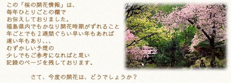 この桜の開花情報は、福島県内でも開花時期が変わり、年によっても違います。むずかしい予想の参考になれば
